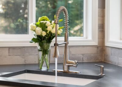 Tigard Kitchen Sink